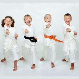 A karate kid sidekick