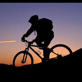 Other (bike, motorcycle, etc.)