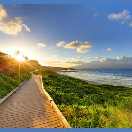 A coastal walk?