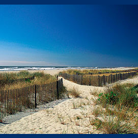 The Cove Beach, New Jersey