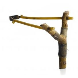 Slingshot (to be loaded with bird droppings)