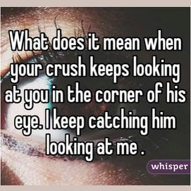 Does Your Crush Like You Back?