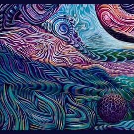 Which Hallucinogenic Would You Be?