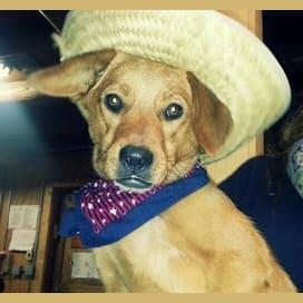 Maddie in a Hat