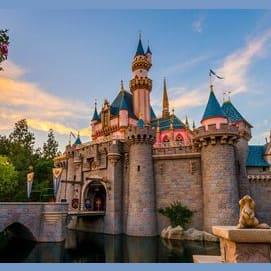 Disneyland in California!