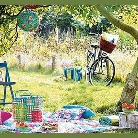Countryside picnic