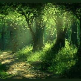 Wherever I may wander