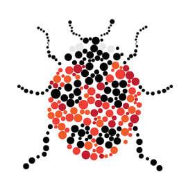 Art ladybug