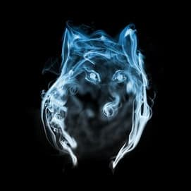Noble wolf