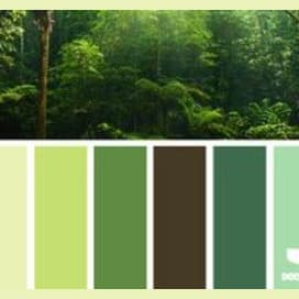 White, Yellow, Beige, Forest Green