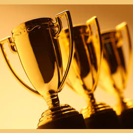 Win an award for one of my skills, such as writing, dancing, or creating