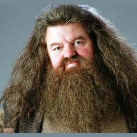 Hagrid :)