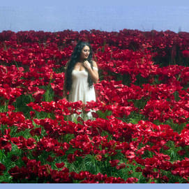 Want to be surrounded by flowers.