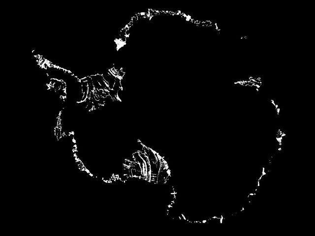 En blanco se observan las fracturas actuales en las plataformas de hielo de la Antártida.