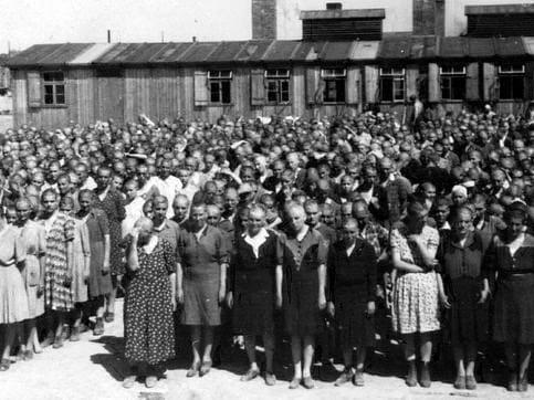 """Cuando llegué al campo de concentración, una chica que estaba junto a mí, me preguntó a qué me dedicaba antes de la guerra, cuando respondí que tocaba el violonchelo, me respondió """"¡Fantástico! Estás salvada""""."""