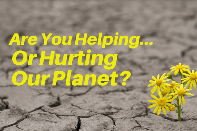 Are You Helping Our Planet? Or Hurting It? Take This Quiz To Find Out
