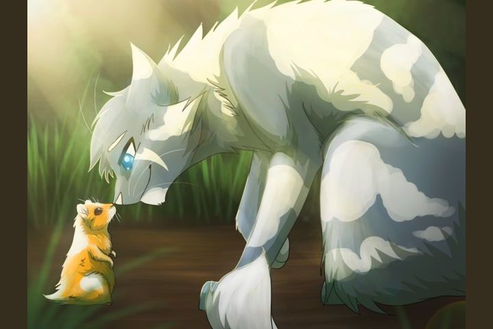 Warrior Cats- StarClan's Trivia of the Clans
