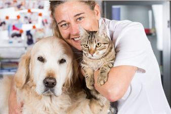 There are two types of people out there -- cat people and dog people. Which kind of person are you? Find out by taking this fun and easy quiz!