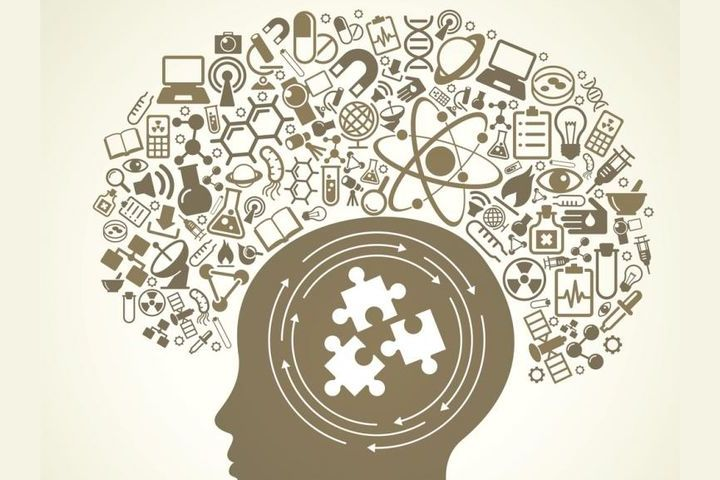 Personality Test! Brain, hormones, science!
