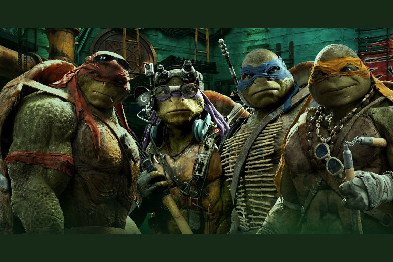 John Jones Auto >> Which Teenage Mutant Ninja Turtle Are You?