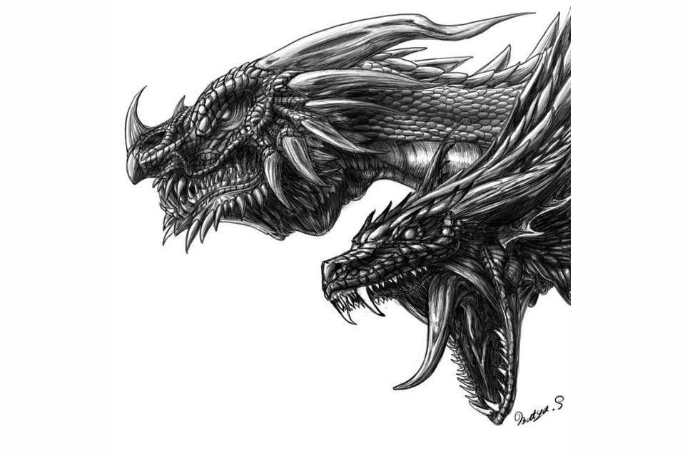 What Wings of Fire Dragon are you, and what power you would have?