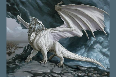 quiz and dragons