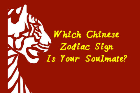 Which Chinese Zodiac Sign Is Your Soulmate?