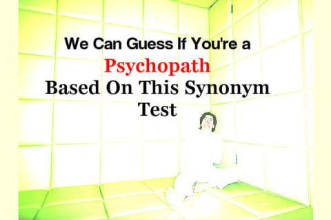 Psychopath Test Questions >> We Can Guess If You Re A Psychopath Based On This Synonym Test