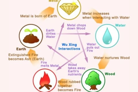 What Wu Xing Element are you?