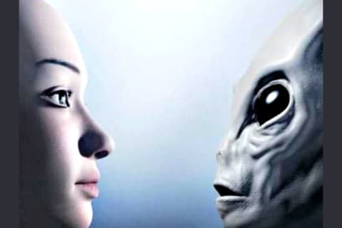 Which Of The 5 Known Extraterrestrial Races Are You A