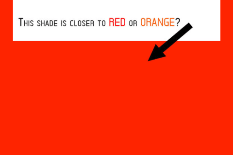 This 11-Question Perception Of Colors Test Can Determine Your