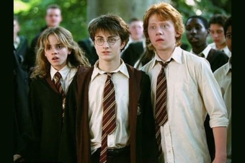 What Member of the Golden Trio Are You?