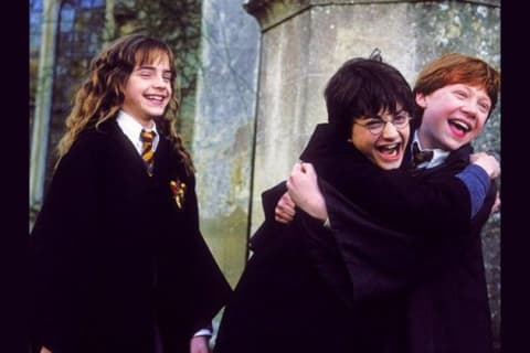 Which character from the 'Harry Potter' Golden Trio are you?