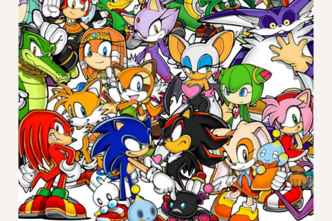 What Sonic The Hedgehog Character Are You