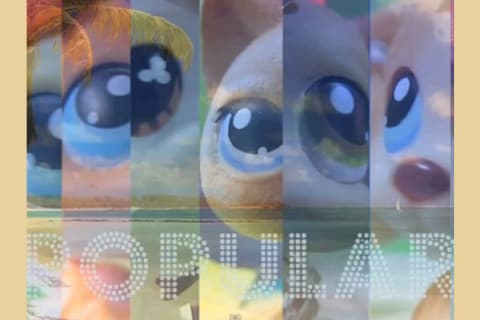 Which Lps Popular Character Are You