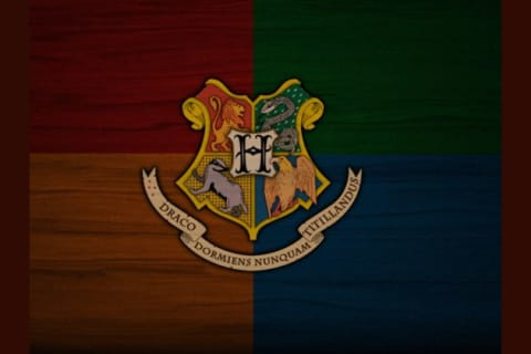 Which Harry Potter House Best Suits YOU