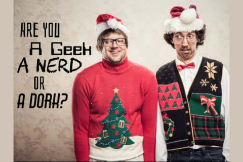 Are You A Geek, A Nerd, Or A Dork?