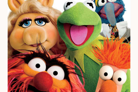 Which one of the Muppets are you?