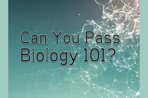 Can You Pass Biology 101?