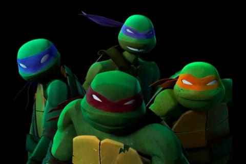 Which Teenage Mutant Ninja Turtle Are You Most Like Tmnt