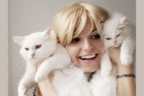 What kind of cat lady are you?