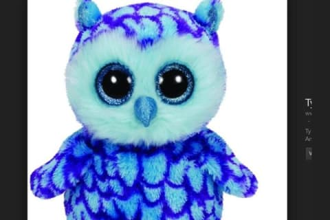 what type of owl matches ur personality??