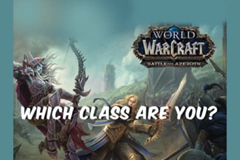 Which World of Warcraft Class are you?
