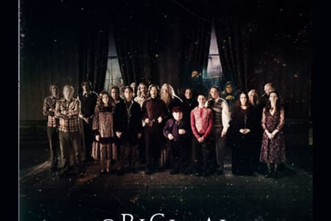 Which Harry Potter Group Are You In?