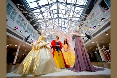 Which Disney Princess Dress Fits You