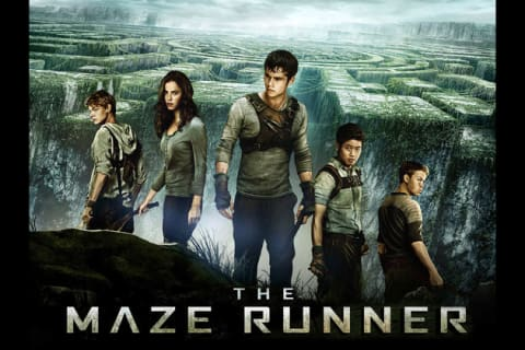 Image result for maze runner characters