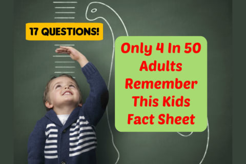 Only 4 In 50 Adults Remember This Kids Fact Sheet  Do You?