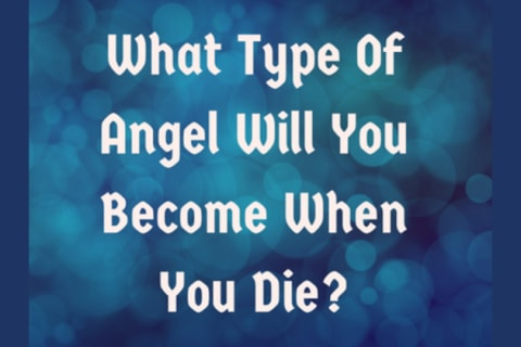 What Type Of Angel Will You Be...