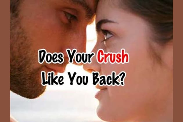 If your crush likes you back quiz