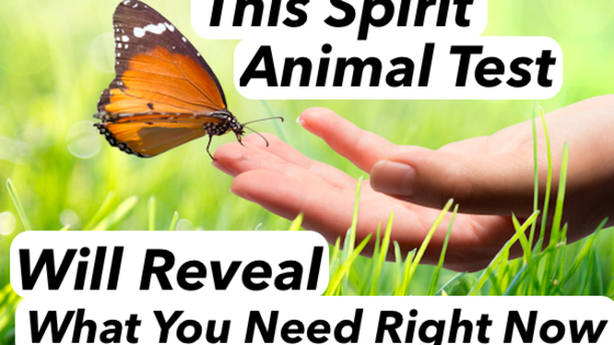Spirit animals aren't just cute and cuddly, ethereal companions. Spirit animals can help you find out what you need in your life right now. Put your trust in them and the truth will reveal itself.